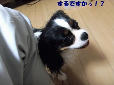 07_convert_20130704173143.jpg