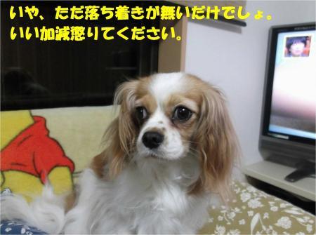 07_convert_20130705172234.jpg