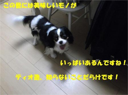 07_convert_20130709172643.jpg