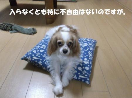 07_convert_20130719175328.jpg