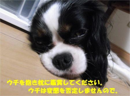 07_convert_20130802180058.jpg