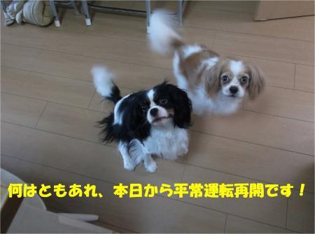 07_convert_20130819173809.jpg
