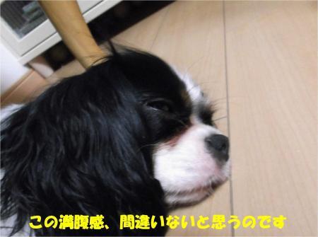 07_convert_20130827164453.jpg