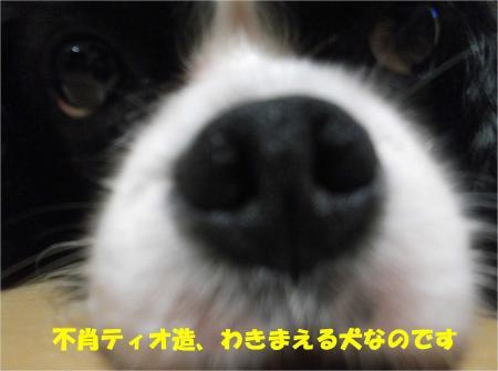 07_convert_20130829184104.jpg