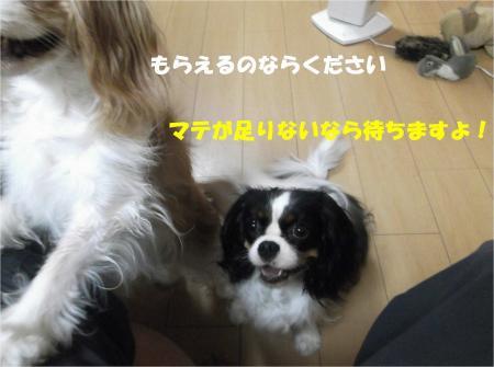 07_convert_20130830182036.jpg