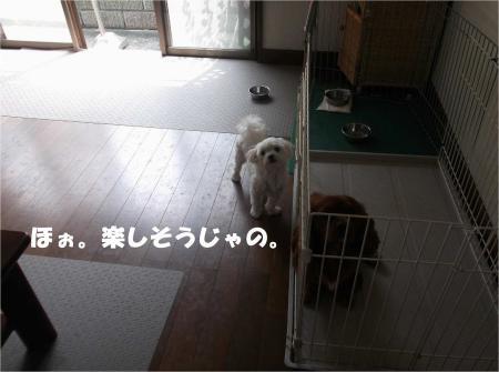 07_convert_20130907154019.jpg