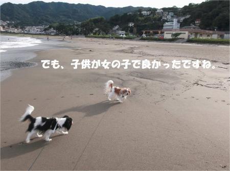 07_convert_20130917161516.jpg