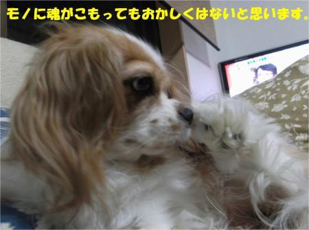 07_convert_20130919172227.jpg
