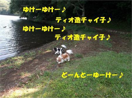 07_convert_20130923133411.jpg