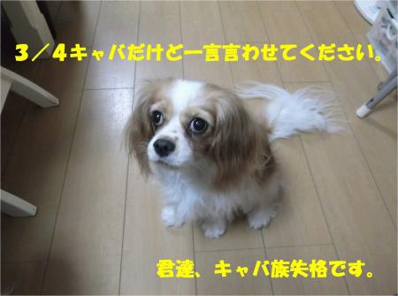 07_convert_20131005150105.jpg