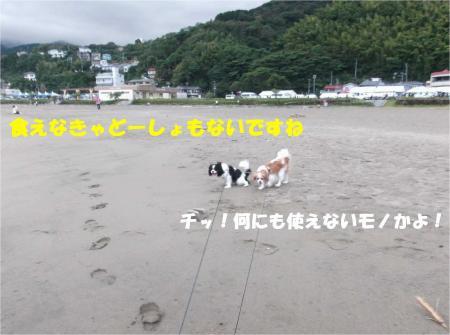 07_convert_20131007174145.jpg