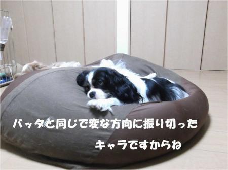 07_convert_20131010174232.jpg