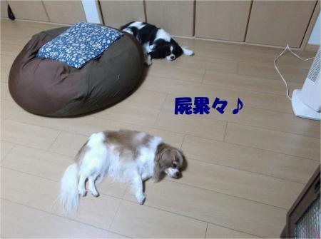07_convert_20131011180008.jpg