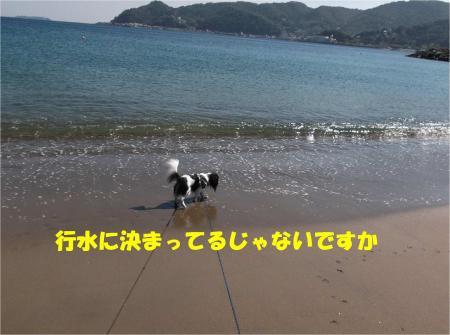 07_convert_20131012162139.jpg