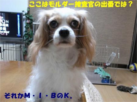 07_convert_20131024183430.jpg