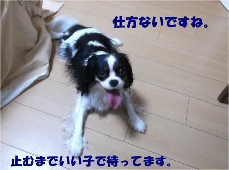 07_convert_20131026170938.jpg