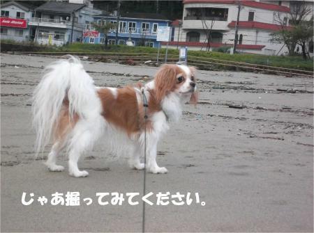 07_convert_20131028174257.jpg