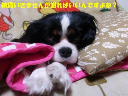 07_convert_20131031185849.jpg
