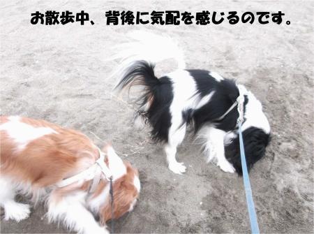07_convert_20131210174258.jpg