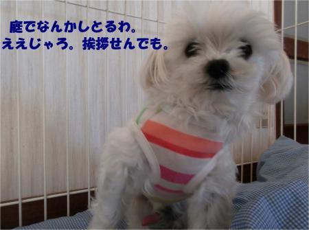 07_convert_20131212173912.jpg
