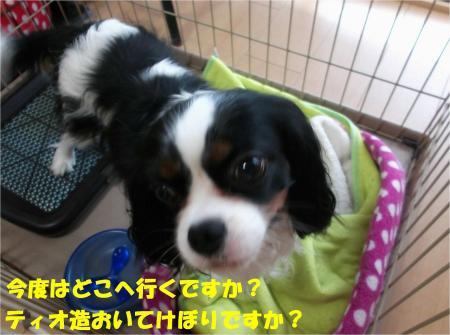 08-2_convert_20130621180005.jpg
