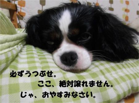 08_convert_20130628161657.jpg