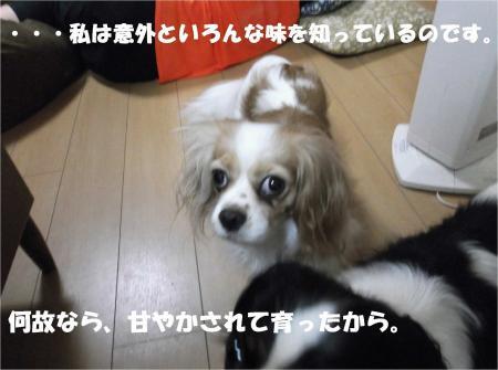 08_convert_20130709172657.jpg