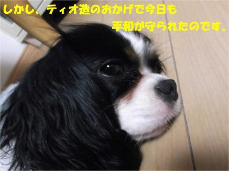 08_convert_20130725190848.jpg