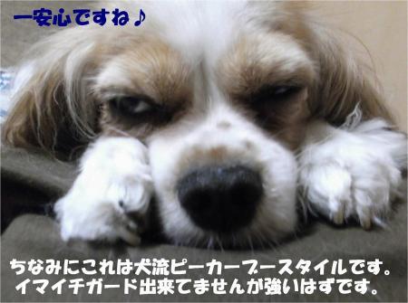08_convert_20130806180012.jpg