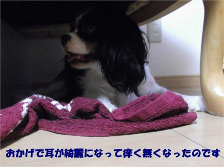 08_convert_20130823180859.jpg