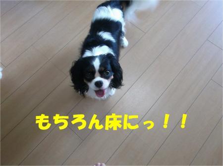 08_convert_20130830182047.jpg