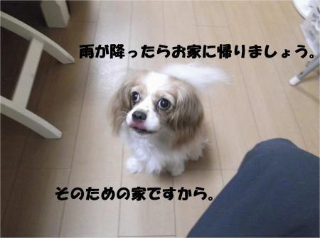 08_convert_20130905174528.jpg