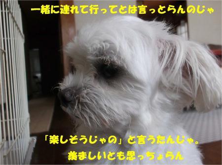 08_convert_20130907154030.jpg