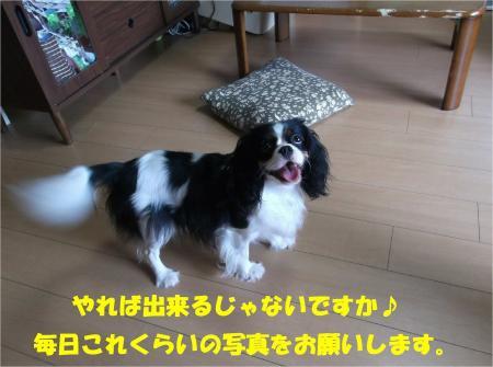 08_convert_20130910173705.jpg