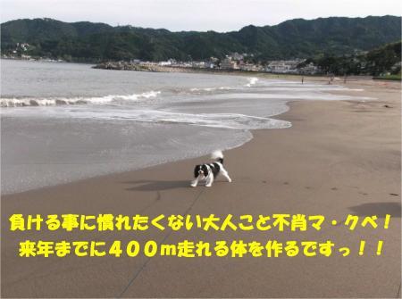 08_convert_20130917161532.jpg