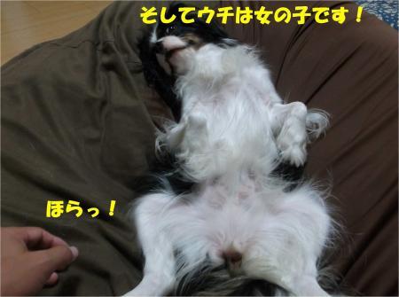 08_convert_20130927185518.jpg