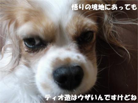08_convert_20131008172853.jpg