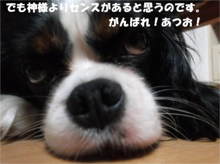 08_convert_20131010174245.jpg