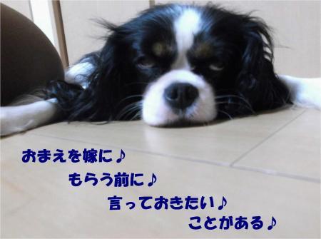 08_convert_20131011180017.jpg