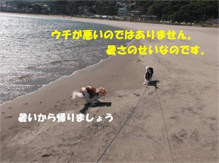 08_convert_20131012162155.jpg