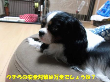 08_convert_20131015170846.jpg