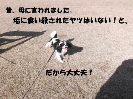08_convert_20131202181031.jpg