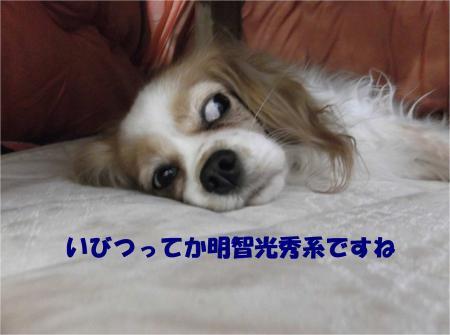 08_convert_20131204180232.jpg