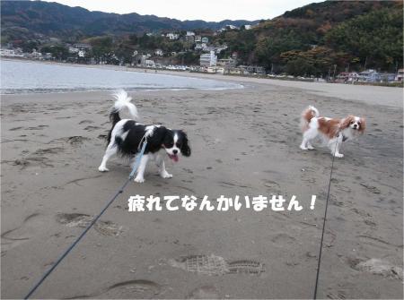 08_convert_20131209170636.jpg