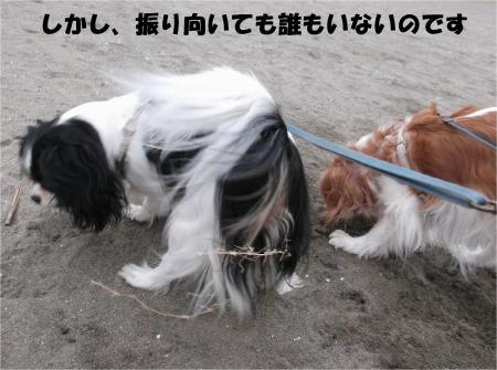 08_convert_20131210174310.jpg