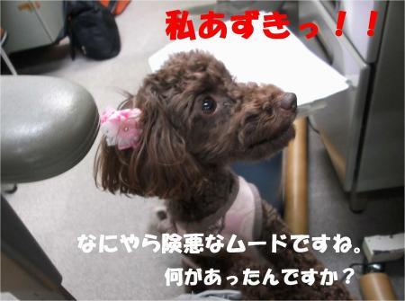 09_convert_20130607184607.jpg
