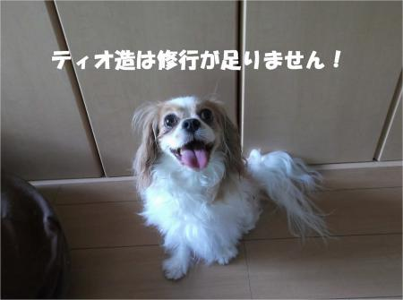 09_convert_20130708171224.jpg