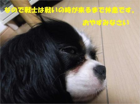 09_convert_20130725190858.jpg
