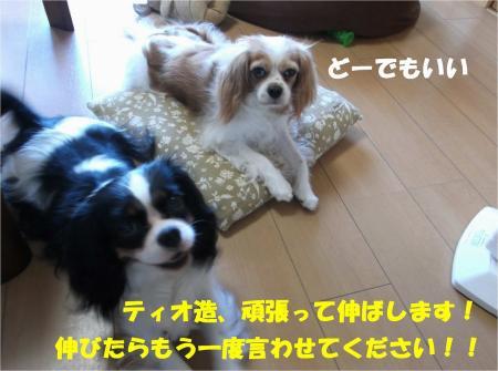 09_convert_20130807174600.jpg