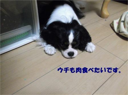 09_convert_20130812165148.jpg